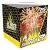 Evolution Fireworks 2015 Vuurwerkcrew